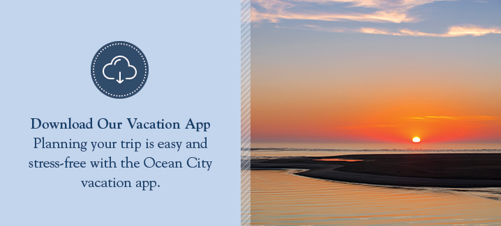 Download Our Vacation App