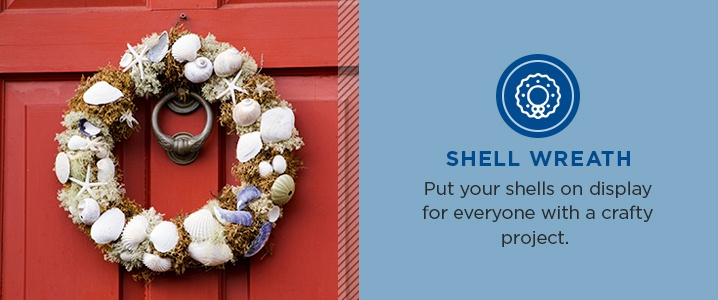 Put your shells on display for everyone with a crafty project
