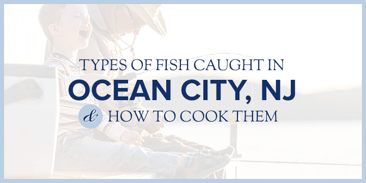 Types of Fish Caught in Ocean City, NJ, and How to Cook Them